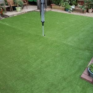 Artificial Lawn 1